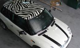 rotulación vinilo de corte vehículo particular